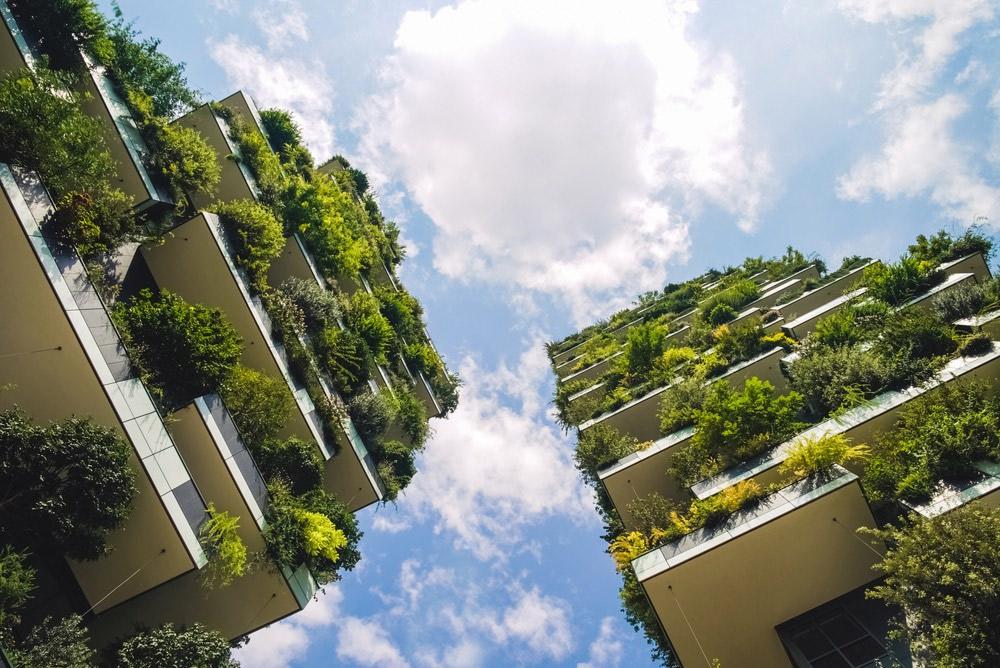 Žalia architektūra