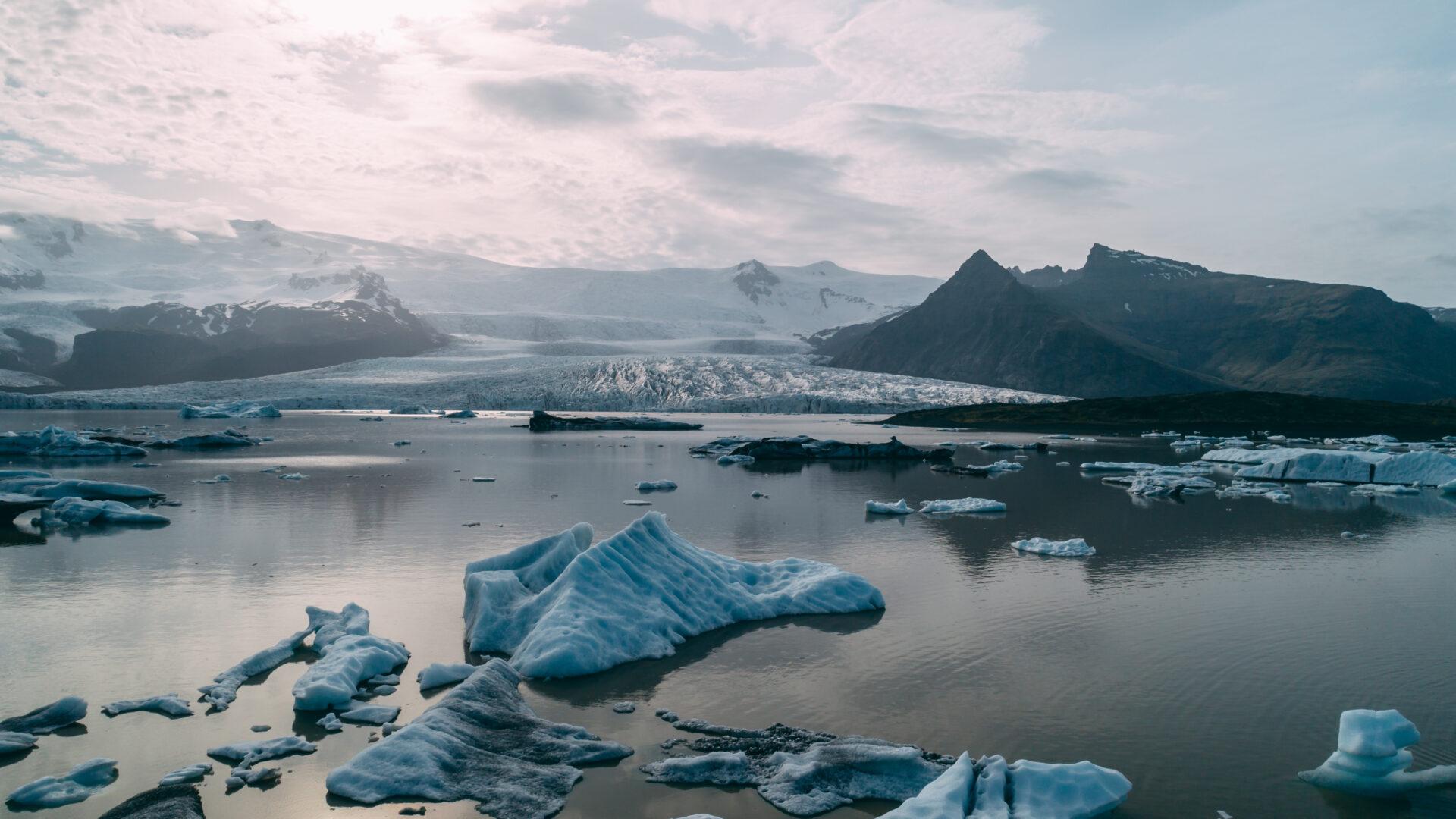 Tirpsta ledynai