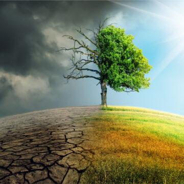 Klimato pokyčiai